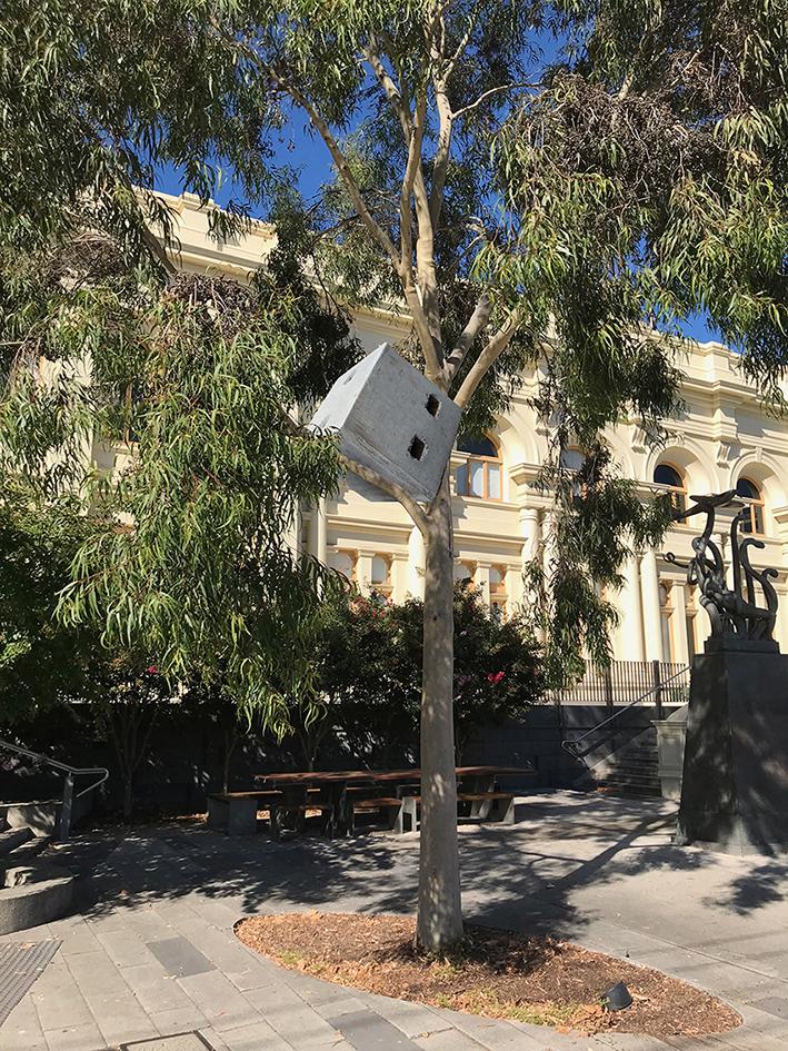 Blockage__Bollard Up The Tree_Nina_Sanadze